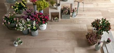 Woodsense Ragno: Carreaux